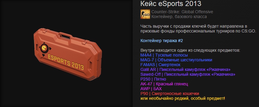 Кейс eSports 2013