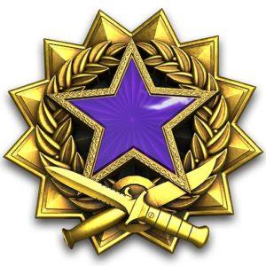 Медаль за службу 2017 в КС:ГО