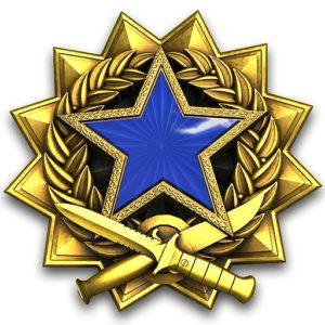 Новая медаль за службу 2017