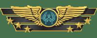 Звания WingMan Напарники