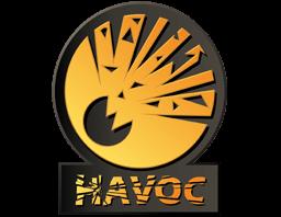 Скины из коллекции HAVOC